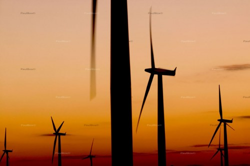 windfarm003